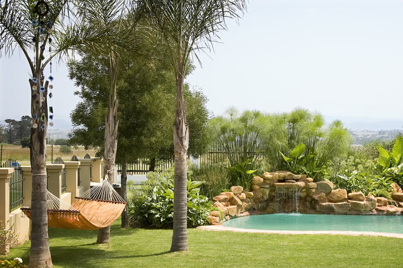 swimming pool and hammock
